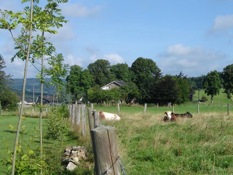 http://www.dairomont.nl/wp-content/uploads/2021/06/dsc02982-1.jpg